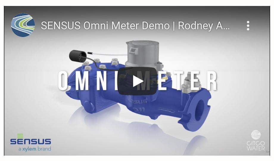 SENSUS Omni Meter Demo